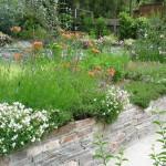 Portfolio » English Garden (6)